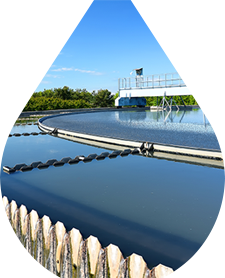 Technology & Experience Deliver Cost-Effective Municipal Water Treatment Solutions
